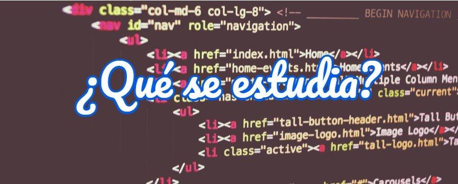 qué se estudia en Java