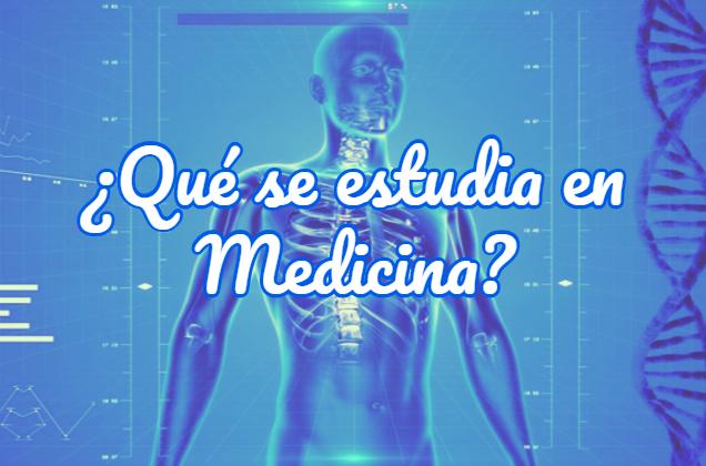 qué se estudia en medicina