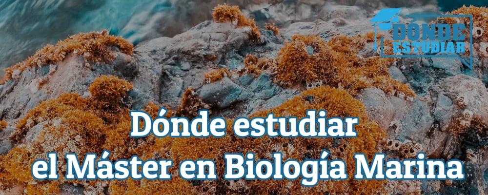 estudiar máster biología marina