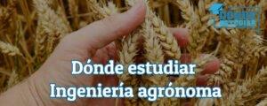estudiar ingeniería agrónoma
