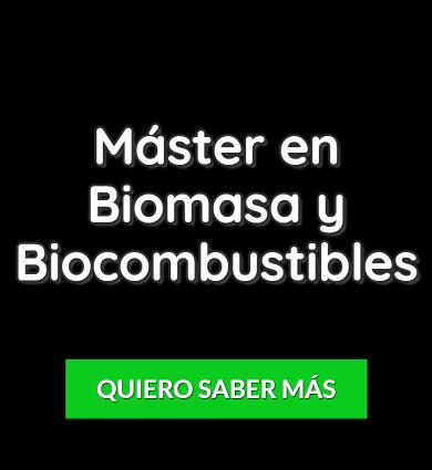 máster en biomasa y biocombustiblesd